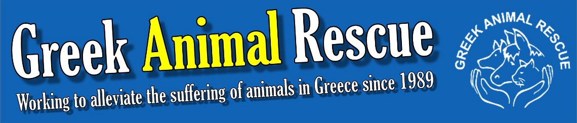 Greek Animal Rescue